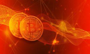 Bei Bitcoin Trader News erfahren